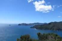 Poley Bay
